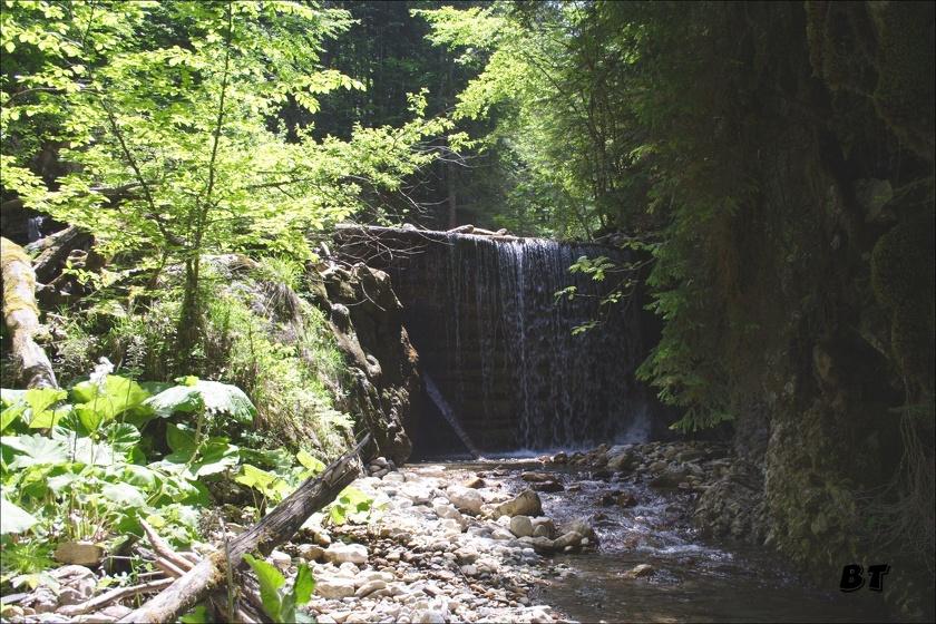 L'été, les torrents et ruisseaux appoertent un peu de fraicheur au randonneur en Chartreuse.